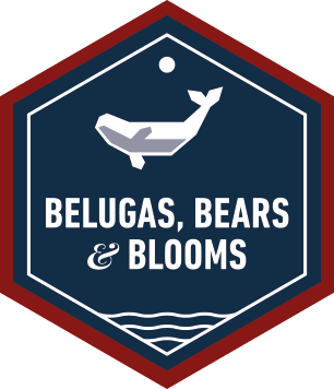 Belugas, Bears and Blooms - Enthusiast